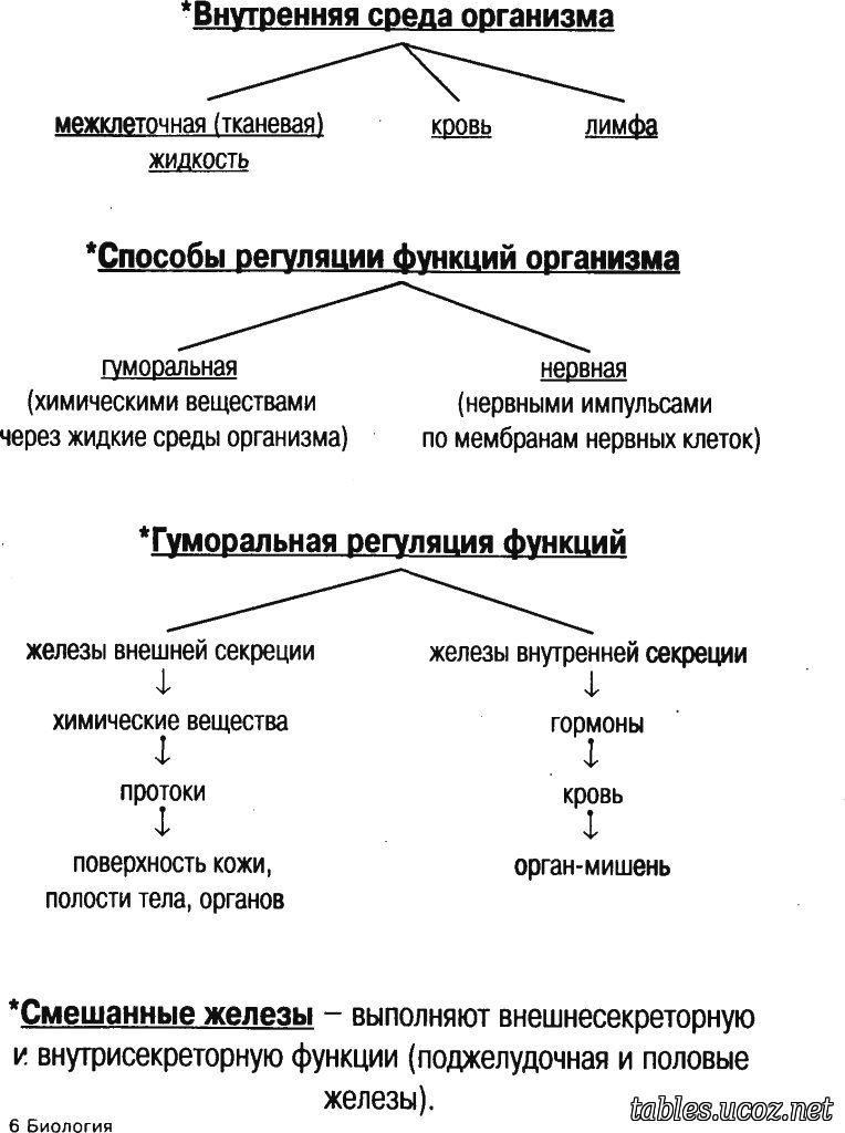общий тетрадь нейрогуморальная гдз обзор организма человека регуляция
